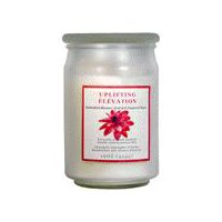 Star Candle Company L.L.C Frosted Apothecary Blossom Candle, 16 Ounce