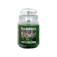 Star Candle Apothecary Jar - Northern Woods, 18 Ounce