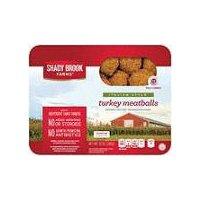 Shady Brook Farms Italian Style Turkey Meatballs, 12 Ounce