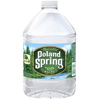 Poland Spring 100% Natural Spring Water, 101.4 Fluid ounce