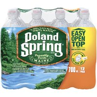 Poland Spring Poland Spring Natural Spring Water Sport Bottle with Flip Cap, 284.4 Fluid ounce