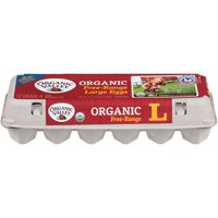 Organic Valley Organic Large Brown Eggs, 24 Ounce