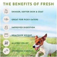 Freshpet Select Freshpet Select Small Dog Bite Sized Chicken Recipe Dog Food, 1 Pound