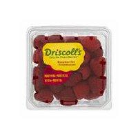 Driscoll's Driscoll's Fresh Raspberries, 6 Ounce