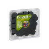 Driscoll's Driscoll's Organic 6 oz Blackberries, 6 Ounce