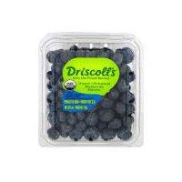 Driscoll's Driscoll's Organic 6 oz Blueberries, 6 Ounce
