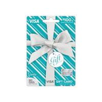 Vanilla Visa Metallic $100 Gift Card, 1 Each