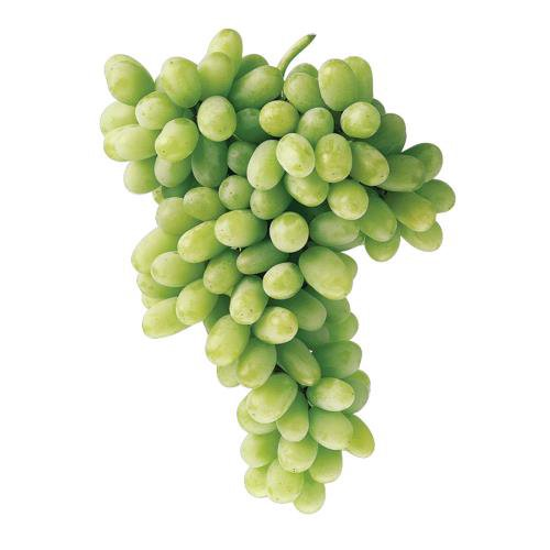 Grapes with a pop of sweet flavor making it the perfect snack option.