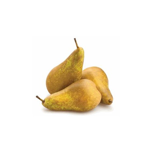 Cinnamon Brown colored pear with a sweeter and more flavorful taste than other varieties