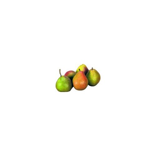 Green skin pear with a sweet and juicy flavor.