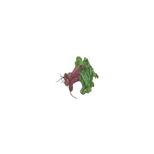 Bunched beets, with a mildly earthy, sweet flavor and high nutritional value.