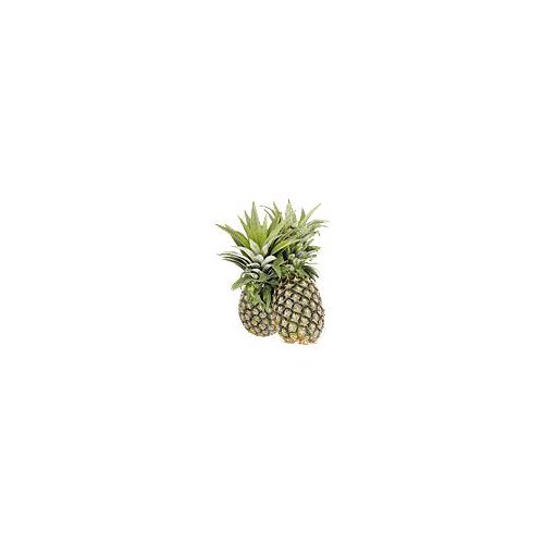 Pine-cone shaped with a fruity, tropical flavor that's aroma is remarkably appetizing.