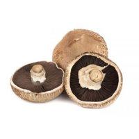 Mushrooms - Portabella, Bulk