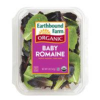 Earthbound Farm - Organic Baby Romaine Salad, 5 Ounce