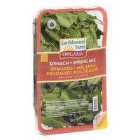 Earthbound Farm - Organic Spinach & Spring Mix, 284 Gram