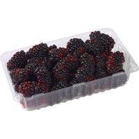 Blackberries - Fresh, 1 pint