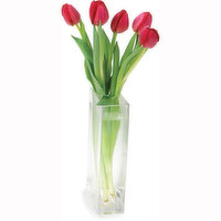 5 Stem Bouquet of Tulips. Glass Vase is Not Included, for Display Purpose Only.