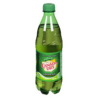 Canada Dry Canada Dry - Gingerale, 500 Millilitre