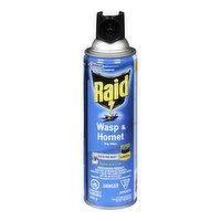 Raid - Wasp & Hornet Bug Killer