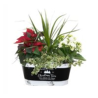Save-On-Foods - Floral - Christmas Planter, 1 Each