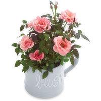 Mini Roses - Live or Laugh - Ceramic Mug 4inch, 1 Each