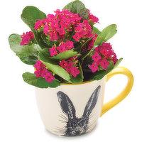 Bunny - Ceramic Mug 2.5in, 1 Each