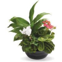 Save-On-Foods Save-On-Foods - Floral - Glazed Ceramic Planter, 1 Each