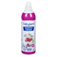 Made with real cream, Dairyland Aerosol Whipped Cream has a rich, creamy flavour that non-dairy substitutes just can't match. It's ideal for last minute dessert perparation!