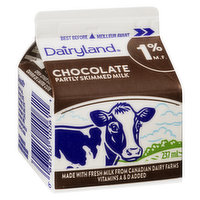 Dairyland - Chocolate Milk 1%