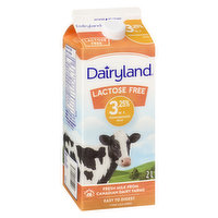 Dairyland - Lactose Free Homogenized Milk 3.25% M.F.