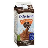 Dairyland - Lactose Free Chocolate Milk 1% M.F.