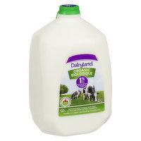 Dairyland - Organic Milk 1% M.F., 4 Litre