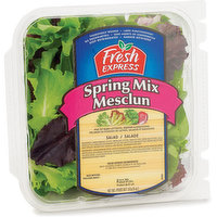 Mix of baby lettuces, greens & radicchio. Thoroughly washed & no preservatives.
