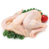 Wingtat - Specialty Chicken TC, 1 Pound
