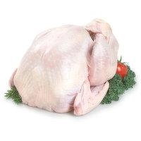 Turkey - Whole Frozen Grade A 5kg & Under, 4.5 Kilogram