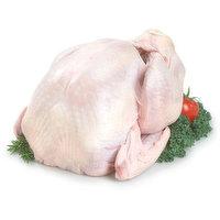 Turkey - Whole Frozen, Grade A 7 To 9 Kgs, 8 Kilogram