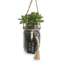 Horty Girl - Succulent in Hanging Mason Jar w Message Tag 5In, 1 Each