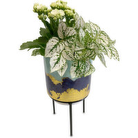 Horty Girl Horty Girl - Agate Glazed Ceramic Planter On Stand With Tropical Garden - 4.75in, 1 Each
