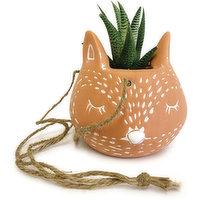 Horty Girl - Terracotta Fox Hanger with Succulent, 1 Each