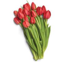 Hot House Hot House - Tulips 15 Stem, 1 Each