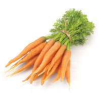 Carrots - Bunched With Tops