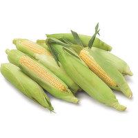 Corn - On The Cob, 1 Each
