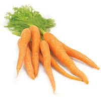 Carrots - Organic, Fresh Bunched