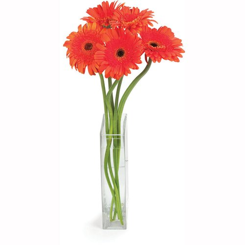 5 Daisy per Bunch. Vase not Included, for Display Purpose Only. Choose from Seasonal Assortment of Colours. Orange, Yellow.