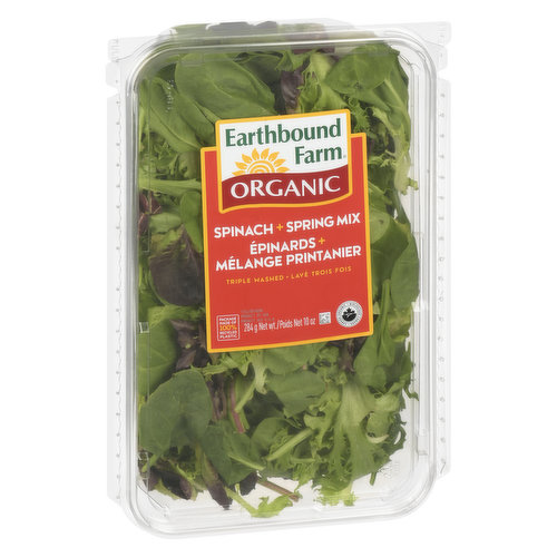 Two tender and tasty salad favourites combined: spring mix and baby spinach.
