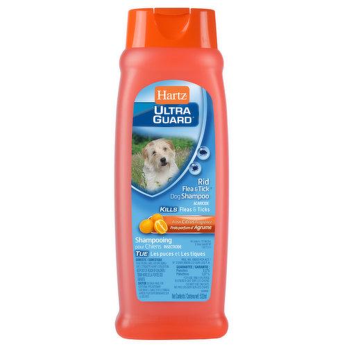 Kills fleas & ticks. Fresh citrus scent.
