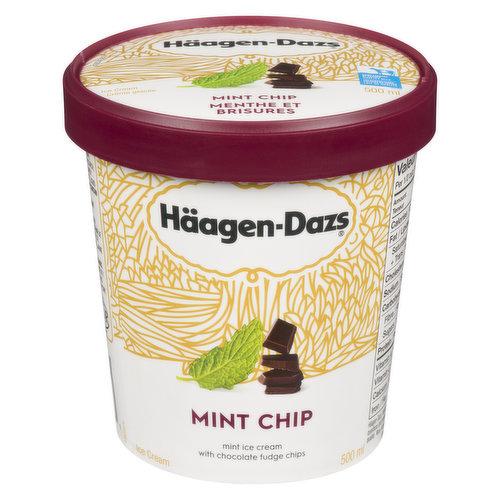 Mint Ice Cream with Chocolate Fudge Chips.
