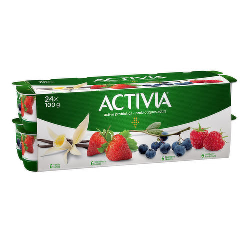 Assortment of Danone Activia small individual creamy yogurts: strawberry (6), raspberry (6), vanilla (6), and blueberry (6). Perfect for a healthy snack, they are made from milk enriched with vitamin D. Filled with live probiotics, these good bacteria,