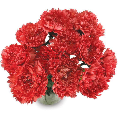 Vase not Included for Display purpose only. Available in Variety of Colours.