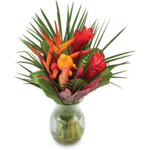 Plants may very, great as a gift or as a center piece.